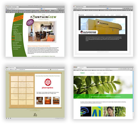 Custom Brochure Websites in Chicago
